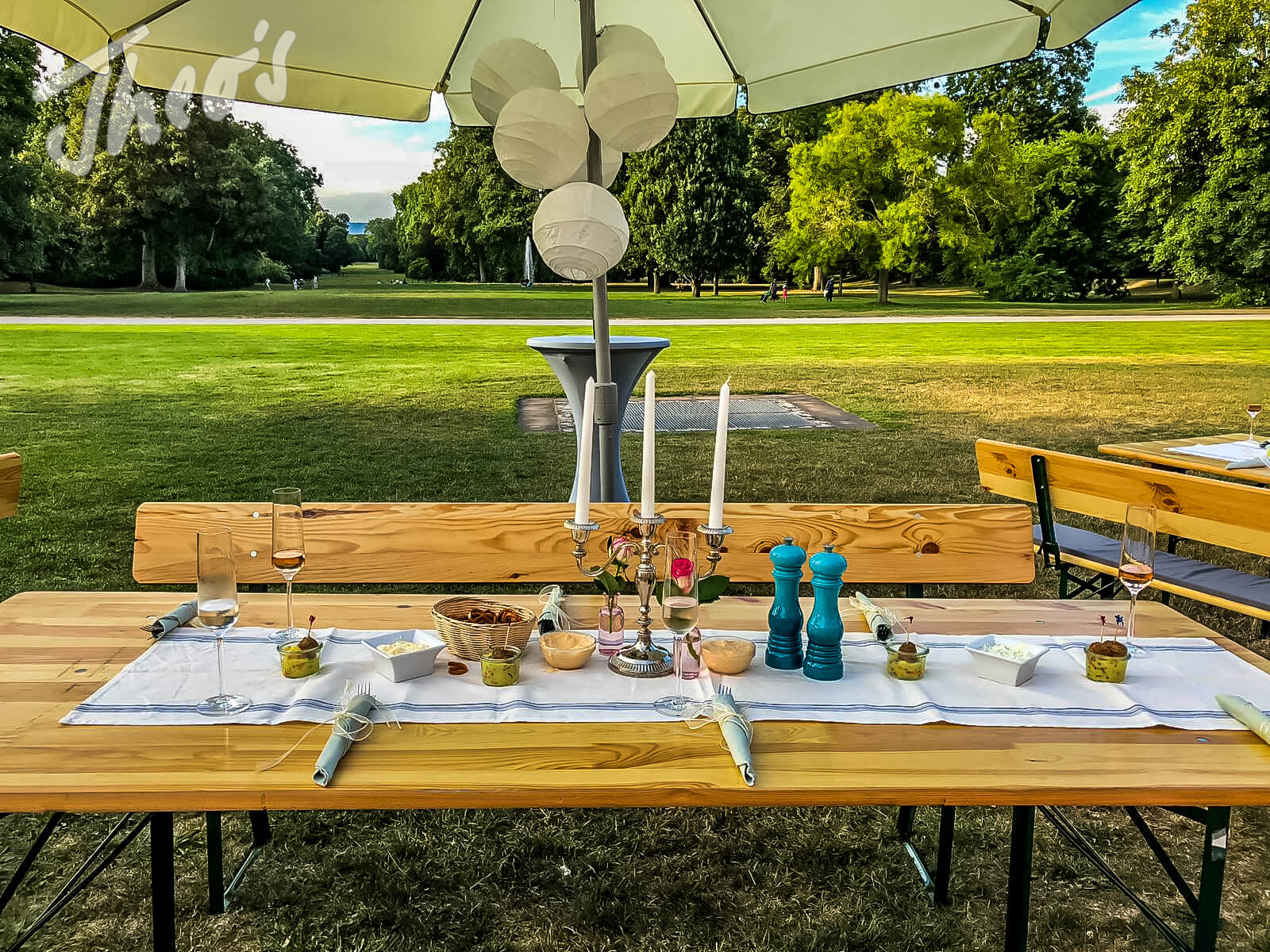 Picknick_Schloss_Biebrich_Schlosspark_party_was_-11